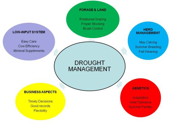Drought focus